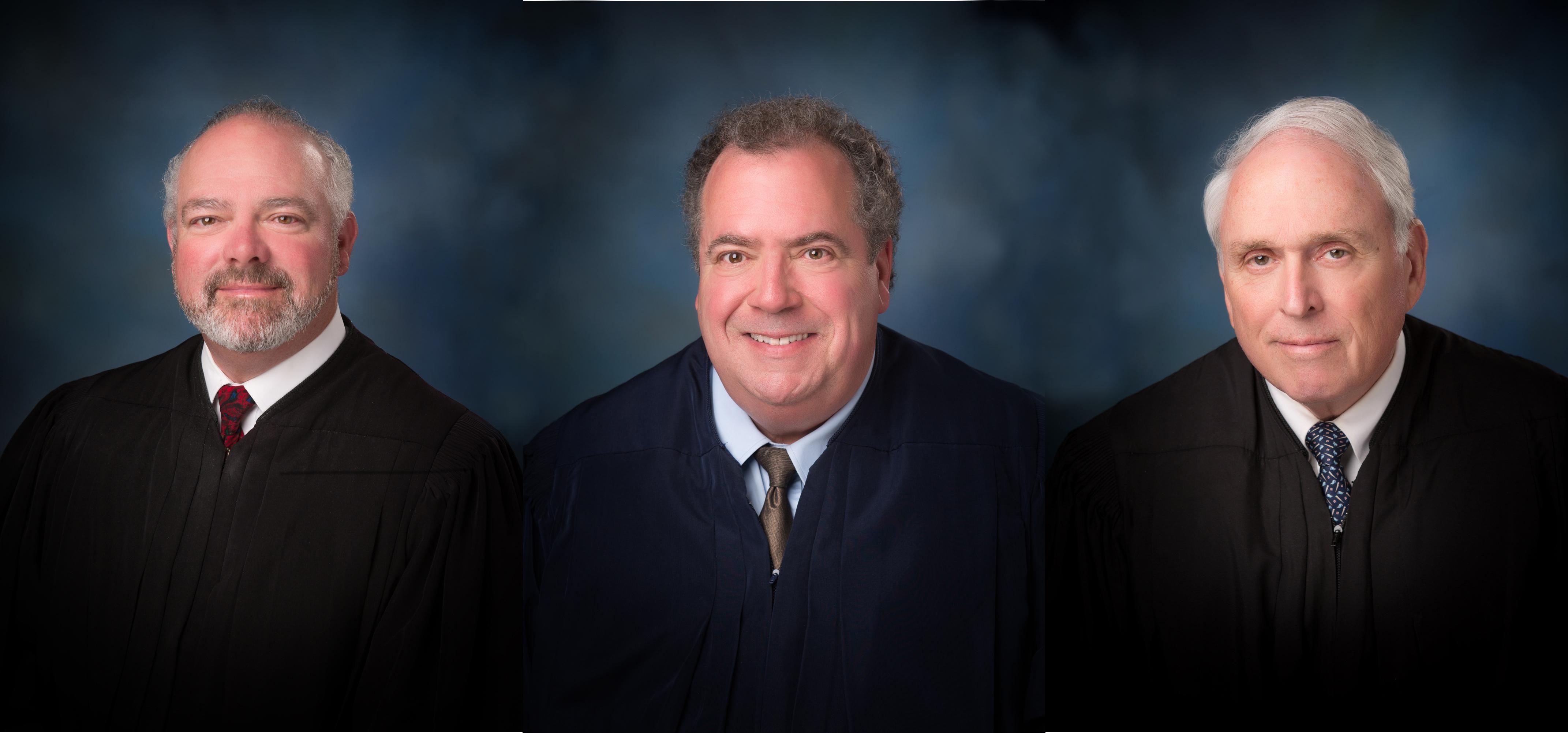 drug court judges